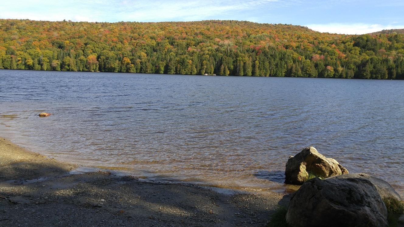 Vermont Department Of Fish Wildlife